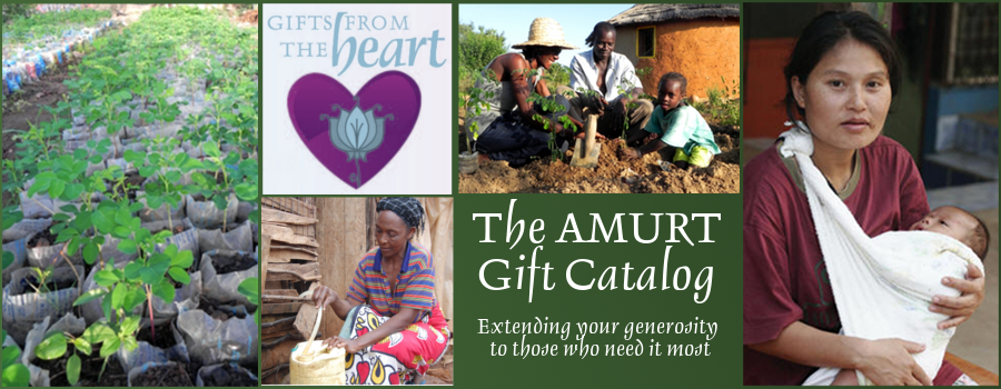 AMURT 2012-2013 Gift Catalog